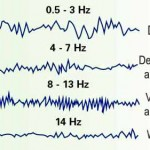 فرکانس ذهن